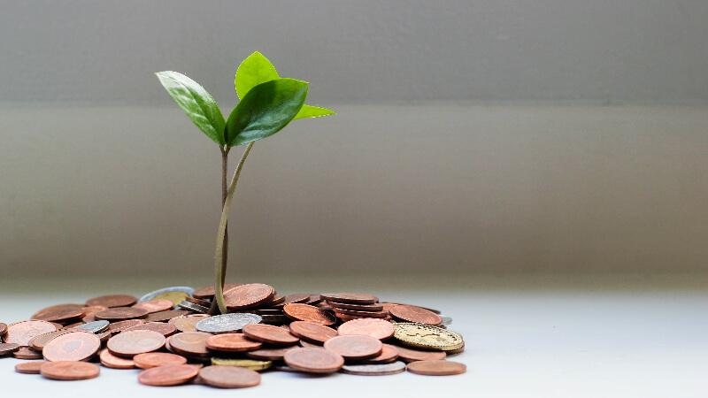 お金を育てる202107